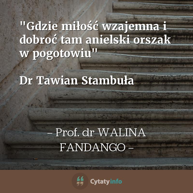 """""""Gdzie miłość wzajemna i dobroć tam anielski orszak w pogotowiu""""   Dr Tawian Stambuła"""