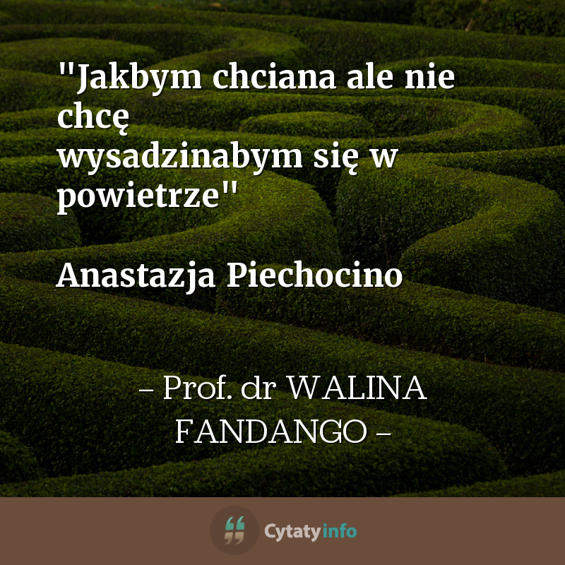 """""""Jakbym chciana ale nie chcę wysadzinabym się w powietrze""""  Anastazja Piechocino"""