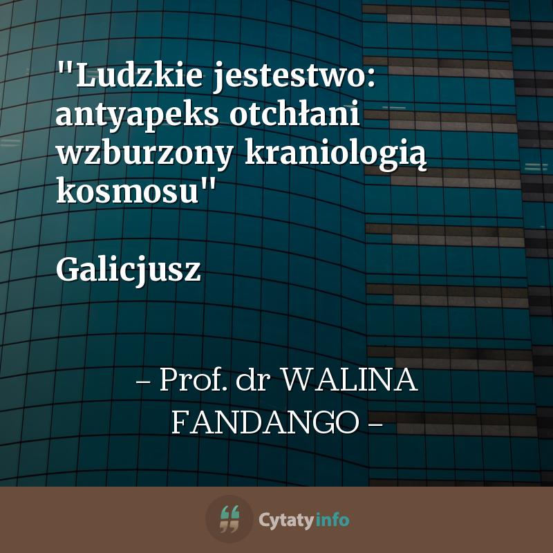 """""""Ludzkie jestestwo: antyapeks otchłani wzburzony kraniologią kosmosu""""  Galicjusz"""