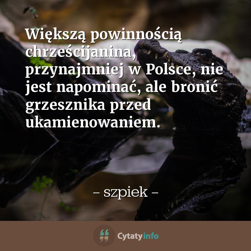 Większą powinnością chrześcijanina, przynajmniej w Polsce, nie jest napominać, ale bronić grzesznika przed ukamienowaniem.