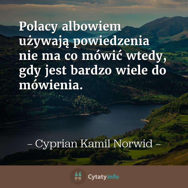 Polacy albowiem używają powiedzenia <em>nie ma co mówić</em> wtedy, gdy jest bardzo wiele do mówienia.