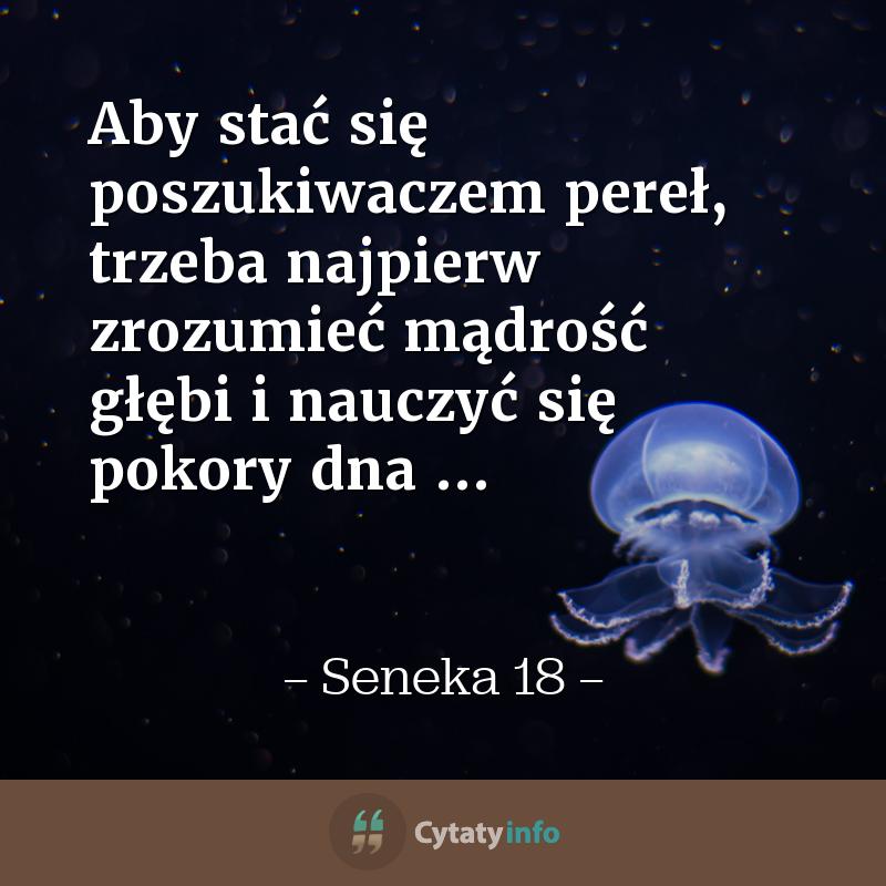 Aby stać się poszukiwaczem pereł, trzeba najpierw zrozumieć mądrość głębi i nauczyć się pokory dna ...